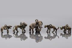 Afrikanische Tierkorne. Stockfoto