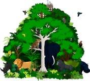 Afrikanische Vektordschungelillustration Vektor-tropischer Wald mit Tieren Lizenzfreie Stockbilder