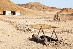 Afrikanische Wüste Lizenzfreie Stockfotografie
