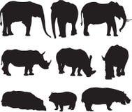Afrikanischer Elefant, weißes Nashorn und Flusspferd silhouettieren Kontur stockbild