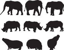 Afrikanischer Elefant, weißes Nashorn und Flusspferd silhouettieren Kontur stockfotos
