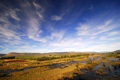 Afrikanischer Fluss Lizenzfreies Stockfoto