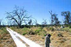 Afrikanischer Fotograf Lizenzfreie Stockfotografie