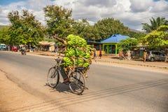 Afrikanischer Mann, der auf ein Fahrrad mit einem Bündel Bananen reist lizenzfreie stockbilder