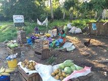 Afrikanischer provinzieller Straßenrandmarkt Stockfotografie