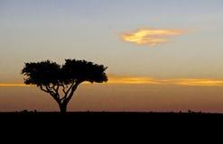 Afrikanischer Sonnenaufgang Stockbild