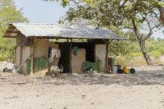 Afrikanischer Stall Lizenzfreie Stockfotos