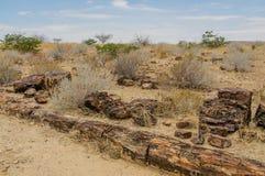 Afrikanlandskap - Damaraland Namibia Fotografering för Bildbyråer