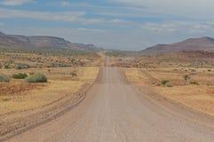 Afrikanlandskap - Palmwag Namibia Royaltyfri Foto