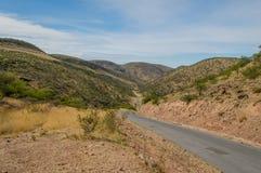 Afrikanlandskap - Palmwag Namibia Arkivfoton