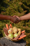 Afrikansk affärshandskakning Royaltyfri Foto