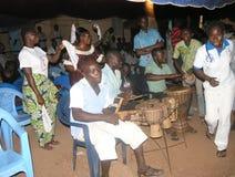 Afrikansk akanegen i land royaltyfri bild