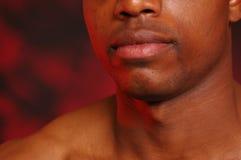 afrikansk amerikankanter Arkivfoton