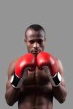 Afrikansk boxare. Fotografering för Bildbyråer
