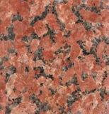 afrikansk brun marmor Royaltyfri Bild