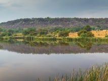 Afrikansk bushveld som bevattnar hålet för vilda djur Royaltyfri Fotografi