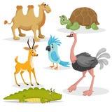 Afrikansk djurtecknad filmuppsättning Gazzelle anthelope, krokodil, bactrian kamel, stor afrikansk sköldpadda, papegoja och strut vektor illustrationer