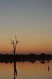 Afrikansk flodsolnedgång arkivfoto