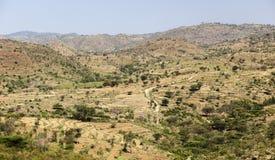 afrikansk liggande Omo dal ethiopia Fotografering för Bildbyråer