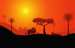 afrikansk liggandesavanna Royaltyfria Foton
