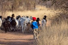 afrikansk pojke Arkivfoton