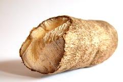 afrikansk sötpotatis Arkivfoton