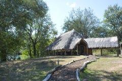 afrikansk savannah Arkivbild