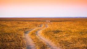 afrikansk savannah Royaltyfria Foton