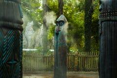 Afrikansk skulptur i Hong Kong Disneyland Royaltyfria Foton