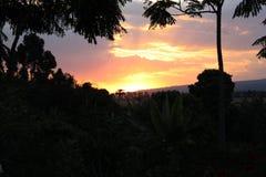 afrikansk solnedgång arkivbild