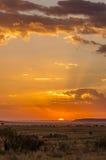 Afrikansk solnedgång i Maasaien Mara Royaltyfri Foto