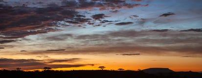 Afrikansk solnedgång, Sydafrika Royaltyfri Bild