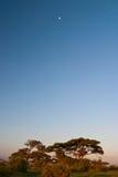 afrikansk soluppgång Arkivfoton