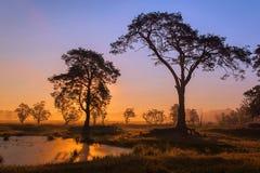 Afrikansk soluppgång Royaltyfri Foto