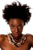 afrikansk stam- skönhetframsida Arkivfoton