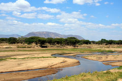 afrikansk torr säsong för liggandeflodruaha Royaltyfri Foto