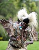 Afrikansk traditionell folkdans Arkivbild