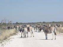 Afrikansk trafik Arkivbild