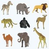 Afrikansk uppsättning för djurtecknad filmvektor Royaltyfria Foton