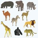 Afrikansk uppsättning för symbol för djurtecknad filmvektor Royaltyfri Bild