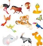 afrikanska djur Arkivfoto