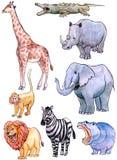 afrikanska djur royaltyfri illustrationer