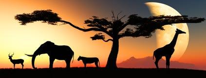 afrikanska djur stock illustrationer