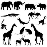 afrikanska djur Arkivbild
