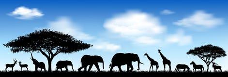 Afrikanska djur, savann Fotografering för Bildbyråer