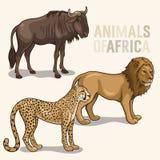 Afrikanska djur set2 Arkivbild