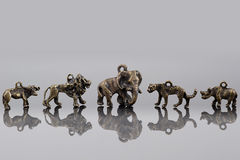Afrikanska djurpärlor. Arkivfoto