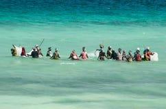 Afrikanska kvinnor från ett fiskeläge fångar den lilla fisken av kusten av havet royaltyfria bilder