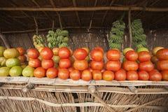 afrikanska tomater Royaltyfri Bild