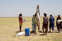 Afrikanskt folk och fiskar Royaltyfria Bilder